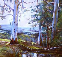 By Heysen's Pool by Lynda Robinson