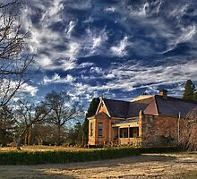 The Nest - Leura by Daniel Murphy