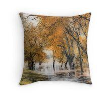 River Flooding #2 Throw Pillow