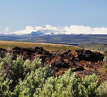 The majestic Steens mountains by Daphene