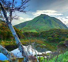 Mt. Apo by wlchin