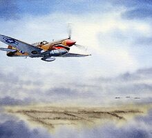 P-40 Warhawk Aircraft by bill holkham
