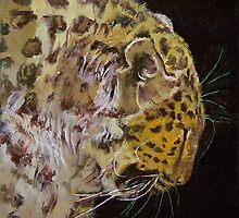 Amur Leopard by Michael Creese