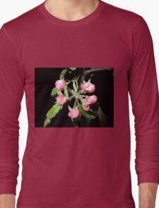 Apple at night Long Sleeve T-Shirt