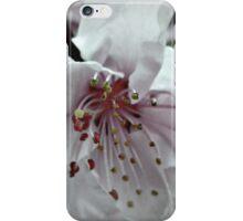 EARNEST iPhone Case/Skin