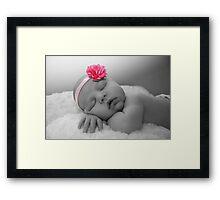 willow rose Framed Print
