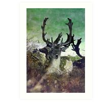 Ridiculously Photogenic Deer Art Print