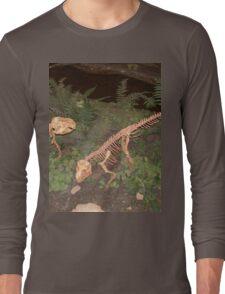 Pretty Psittacosaurus Long Sleeve T-Shirt