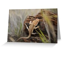 Lizard Greeting Card
