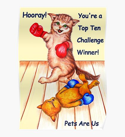 Banner challenge entry - Pets are Us Poster
