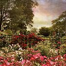 Garden of Roses by Jessica Jenney