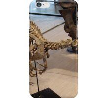 Random Velociraptor iPhone Case/Skin