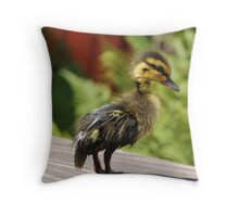 "Duckling "" Tweety "" Throw Pillow"