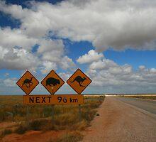 Aussie Signs by Ingrid Merrett