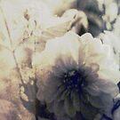 Vintage Flower 1 by babibell
