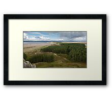 Whiteford Woods Gower Swansea Framed Print