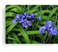 Purple and Green Floral Canvas Print