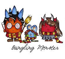 Bungling Monster - Harry Potter Photographic Print