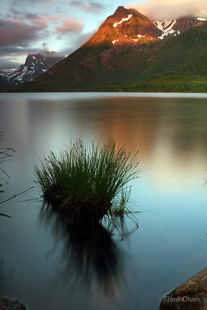 Reflections by the lake by Frank Olsen