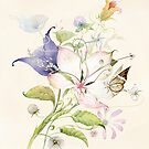 Flowers by Natalya   Tabatchikova