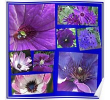 Pink and Purple Passion Floral Collage Poster