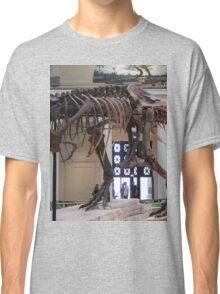 Random Tyrannosaurus Classic T-Shirt