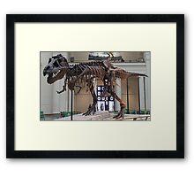 Random Tyrannosaurus Framed Print