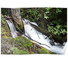 Rough Creek Poster