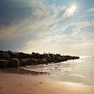 Cleveleys Beech - Breakwater by David Jones
