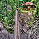 Suspension Bridge on the Ironwood Trail by Larry Trupp