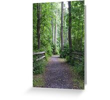 Catharine Valley Trail Greeting Card