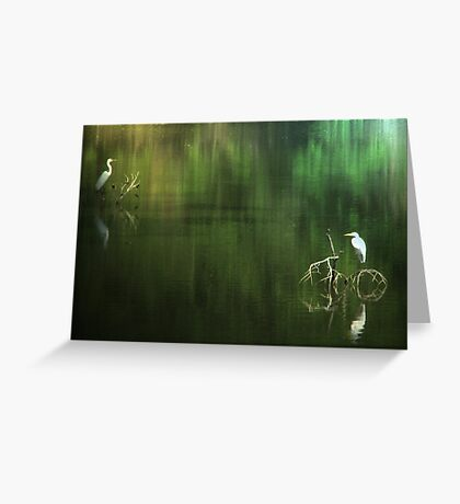 Egrets In Reflection Greeting Card