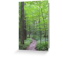 Six Mile Creek 2 Greeting Card