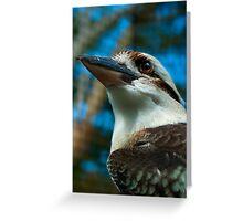 Where the Kookaburras Call  Greeting Card