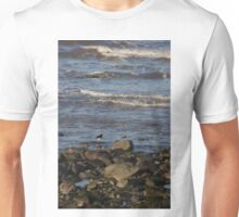 Oyster Catchers Unisex T-Shirt
