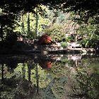 The ornamental lake by Jenny Hall