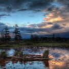 Pond in the Sunset by Mari  Wirta