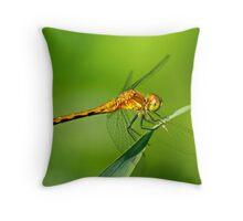 Meadowhawk Throw Pillow