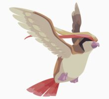 Pidgeot by cluper