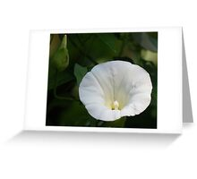 Wild Flower Ver 2 Greeting Card