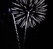 THE FLOWER (Fireworks)... by Cristina C.p.Neumann