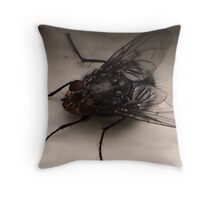 Ever want to be a fly on the wall Throw Pillow