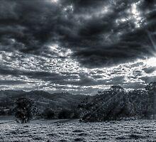 Light In Darkness by Josie Eldred