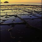 Tessellated Pavement by Damon Colbeck