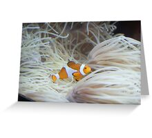 """""""Finding Nemo"""" Greeting Card"""