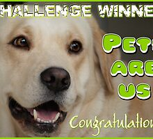 Pets Are Us - Challenge Winner Banner by Tanya Rossi