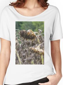 field of dried sunflowers Women's Relaxed Fit T-Shirt