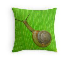 music like snail Throw Pillow