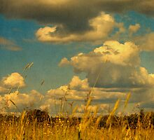 Big Clouds Overhead by Nikki Smith