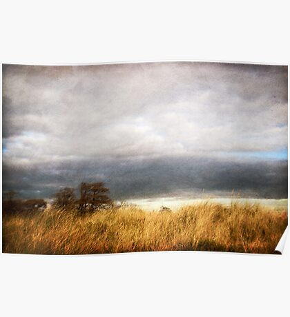 A blustery day Poster